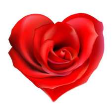 heart-shaped-rose