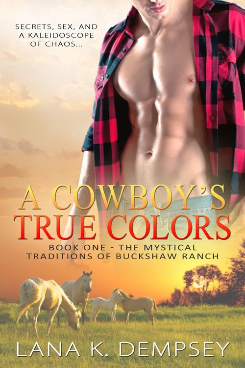 A Cowboy S True Colors Lana K Dempsey Book Addict Live