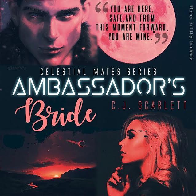 ambassadors-bride28346