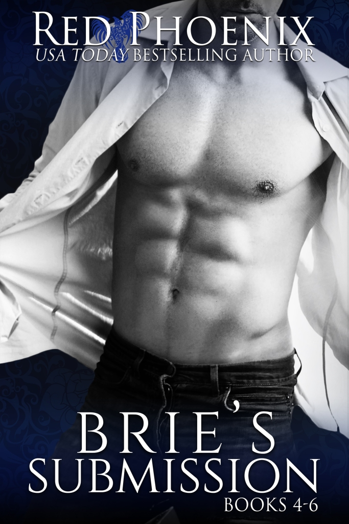 bries-submission-4-6-amazon35609