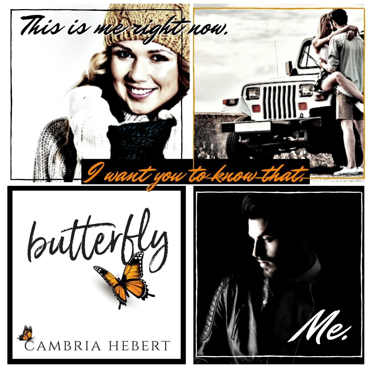 butterflyT1[107249]