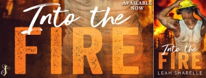 Into The Fire Banner